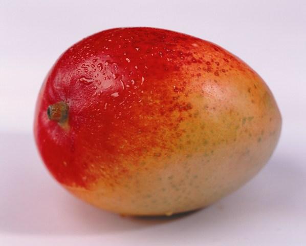 Quali materiali usare per l esportazione del mango - Macchine Alimentari eb947eca23b