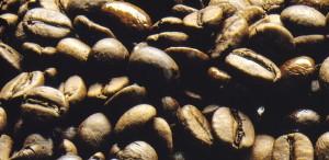 tavoletta cioccolato / chicchi caffŽ fondo marrone ALPROS013CK03.eps