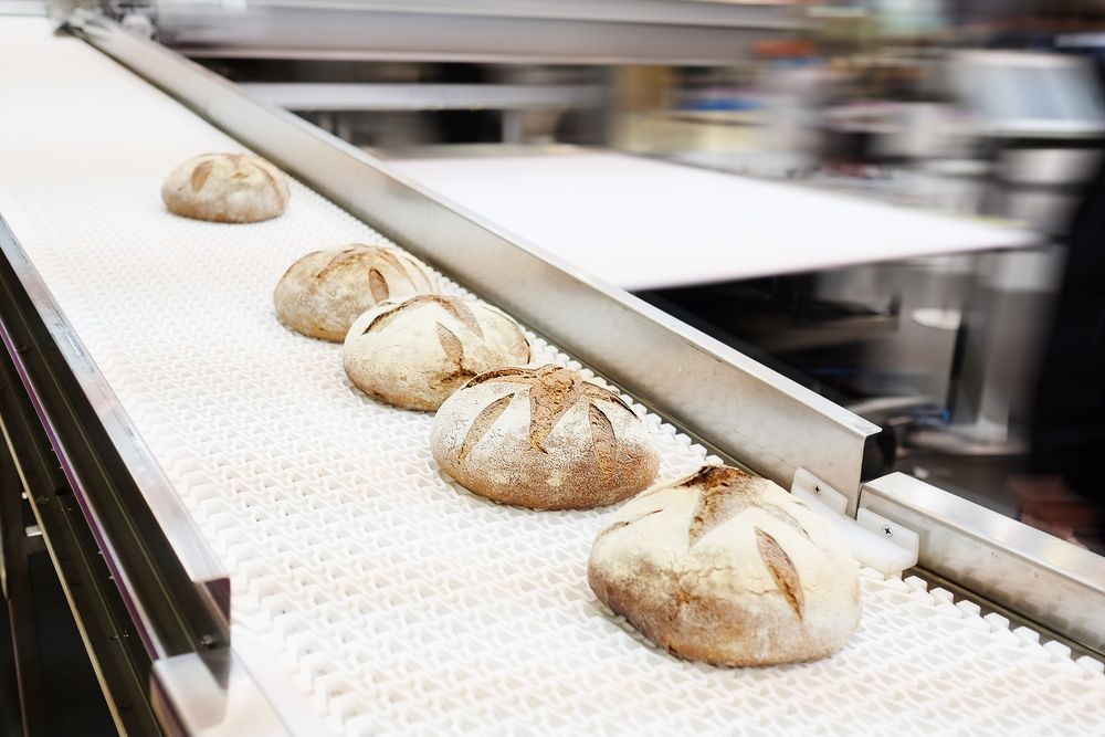 Baked breads on production line at bakery